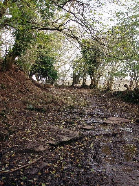 Old way along the side of Black Hill
