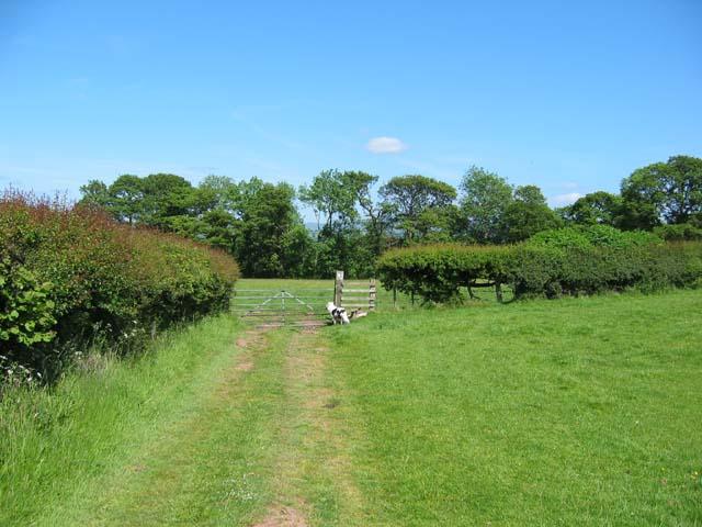 gateway near Tyn Llyn farm