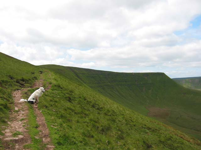 Looking from Gist Wen to Craig Cwareli