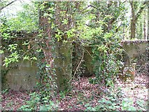 SZ5389 : Doreshill farm, WWII  Ack Ack Site by Barrie