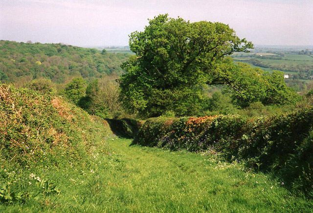 Lifton: old track near Harts farm