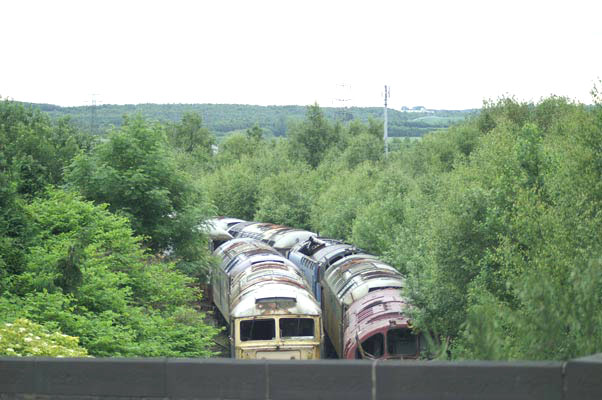 Scrap locos on Springs Branch