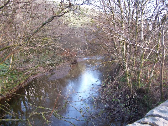 River Cur