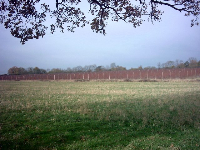 Sibton Hop Field in November