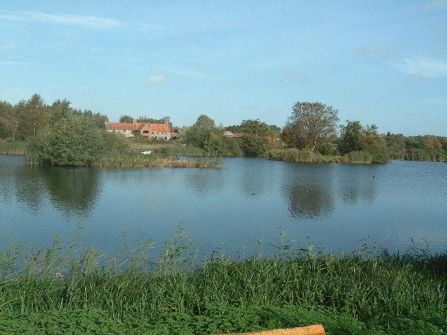 Pensthorpe Waterfowl Park: Across the lakes