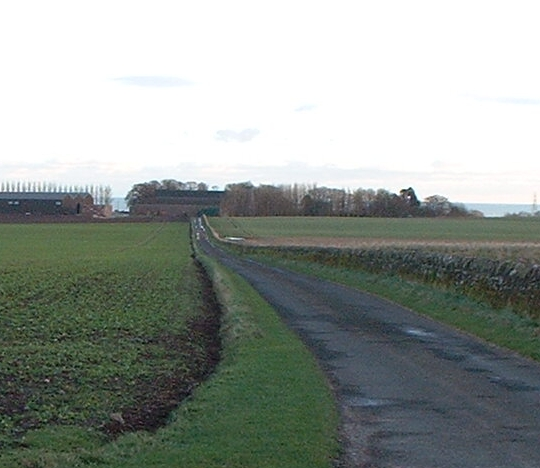 Main Road into Cuthlie Farm