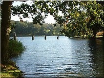 TF0505 : Lake at Burghley House by Steve Edge