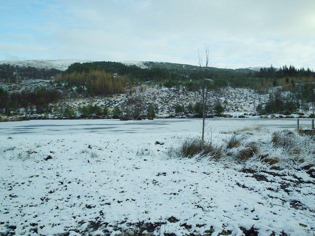 A Man made Duck Pond at Glen Rossal