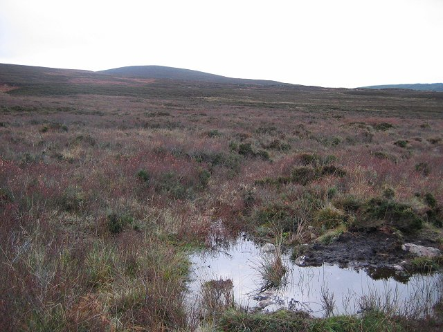 Bogs, Burn of Curran.