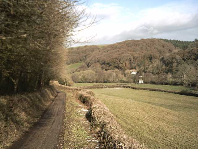 Exe Valley Way near Stanterton Wood