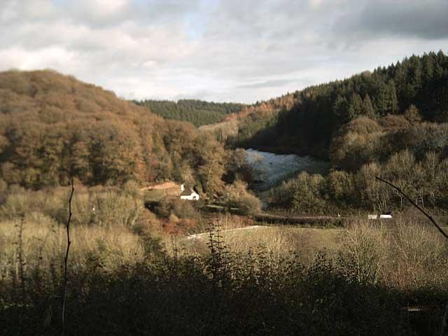 View of Breakback Wood from Little Hatswell