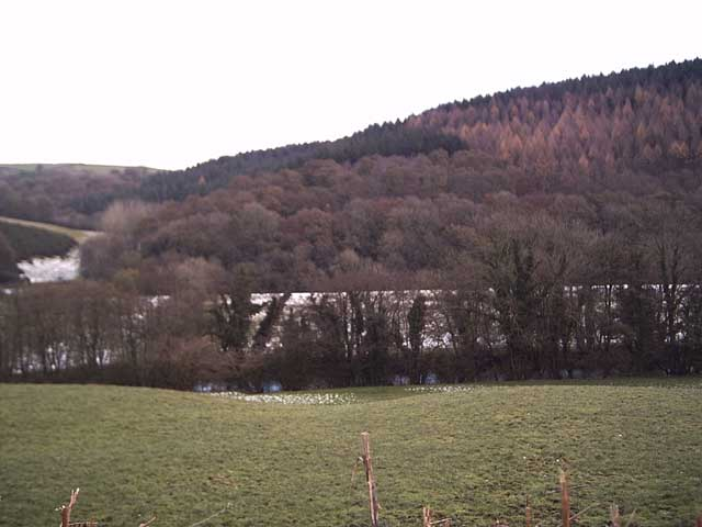 Exe Valley near Emmerford Farm