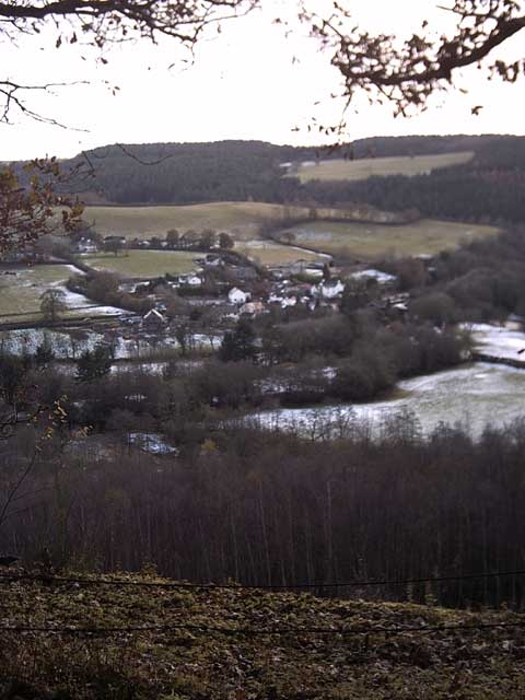 View of Cove from Holmingham Woods