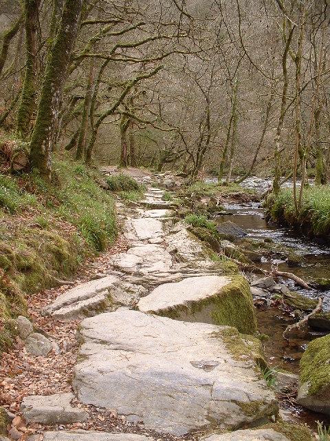 Path through Lea Wood