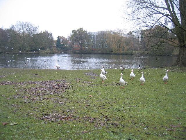 Tudor Grange Park Solihull