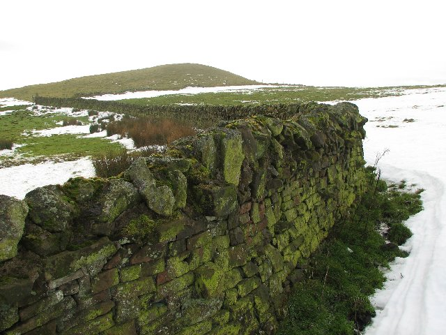 Wall on Dunsyre Hill