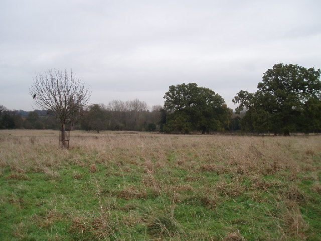 Parkland by Bromham Church