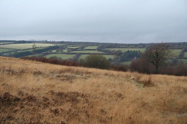 Withypoole and Hawkridge: near Knighton Combe
