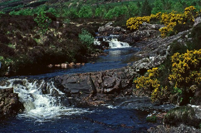 Kinloch River, Isle of Rum