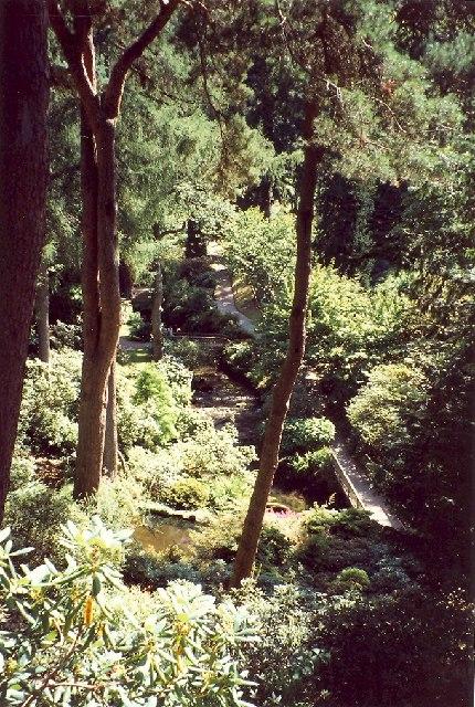 Woodland Garden, Bodnant Gardens