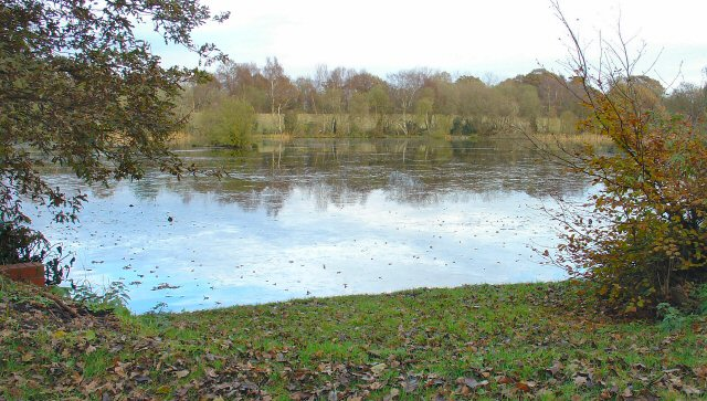 Newell's Pond, Next to Newell's Farm, Prings Lane, West Sussex.