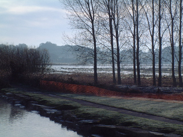 Stoborough water meadows