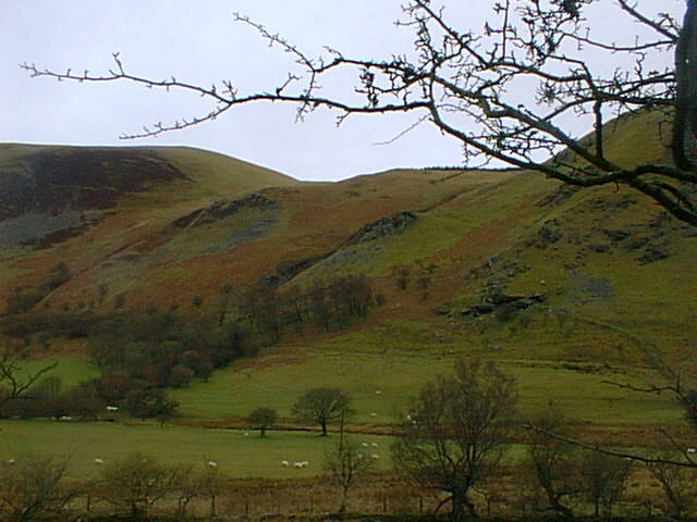 The Berwyn Valley  near Tregaron
