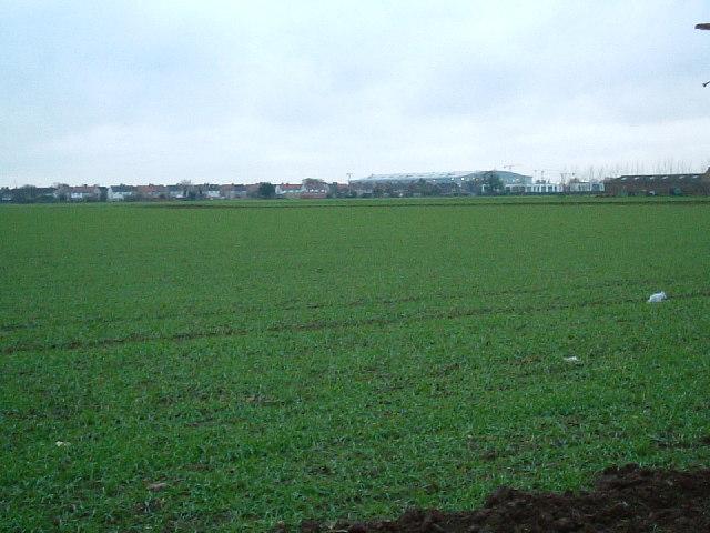 View from Harmondsworth Lane