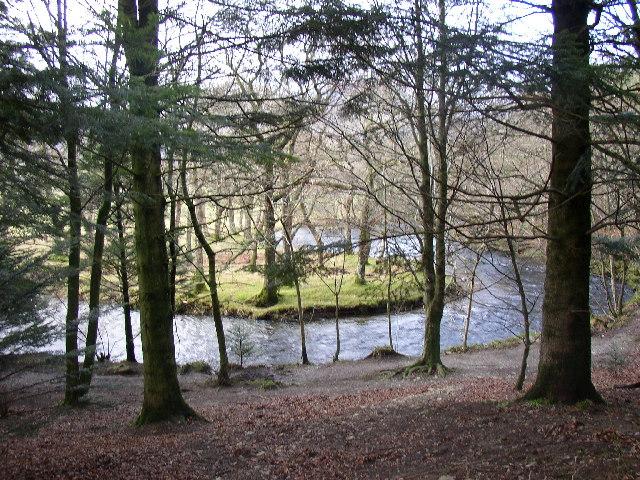 River Meander, Brackenthwaite