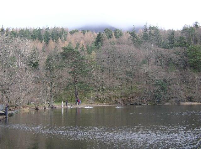 Lanthwaite Wood, Brackenthwaite
