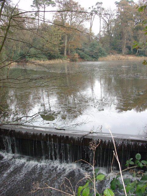 Pond adjacent to A281 (Brighton Road) at Birchen Bridge, West Sussex.