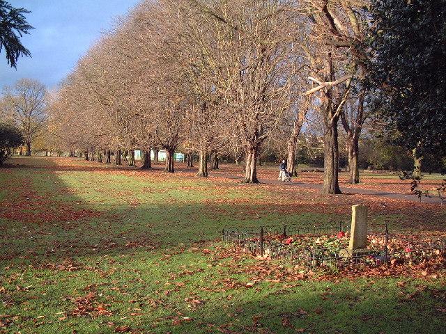 Lammas Park
