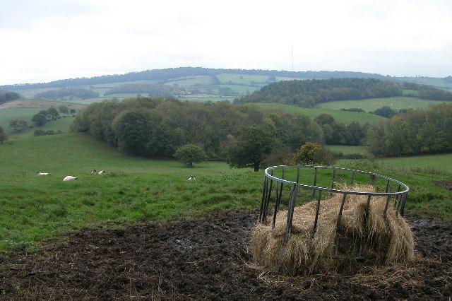 The Ridge Hill Transmitter viewed from Lower Buckenhill
