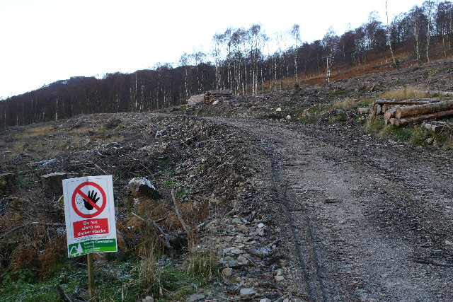 Forest Operations north side of Loch Tummel
