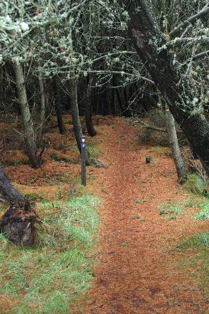 Speyside Way and Moray Coast Trail