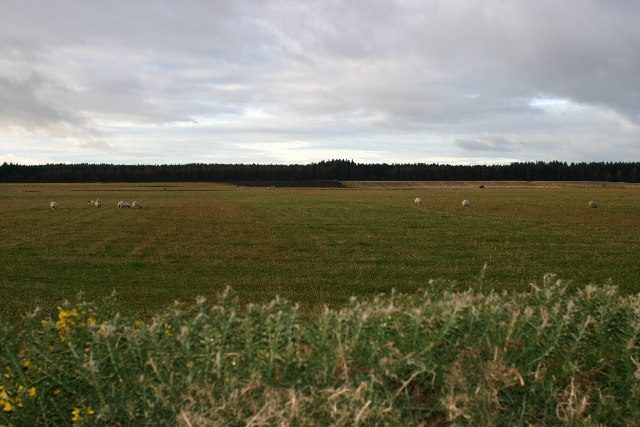 Large flat field near Mosstodloch