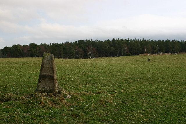 Standing Stones near Grantown-on-Spey