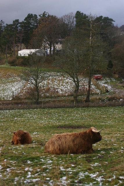 Culfoichmore Farm