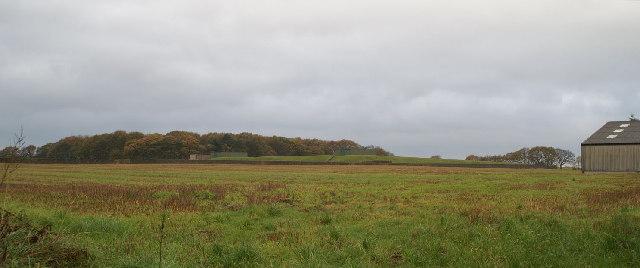 Reservoir in the fields