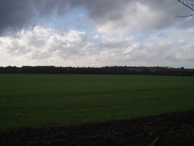 Floodplain fields