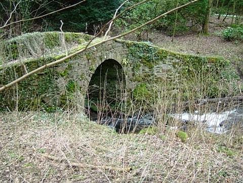 Auld Leckie Brig - Leckie Estate - Gargunnock