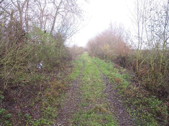 Track to Hasfield Ham