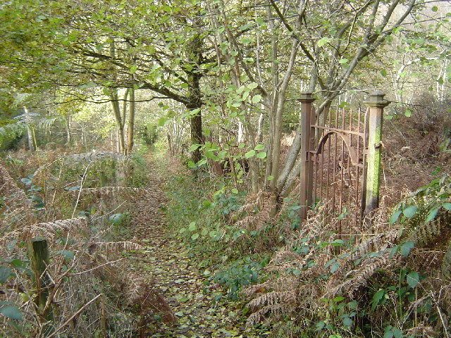 Harefield: Park Wood, Hill End