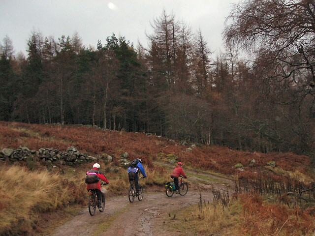 Aberfeldy to Dunkeld cycle route