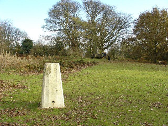 Triangulation Pillar, East Top of Park Hill, Reigate Priory Park, Surrey