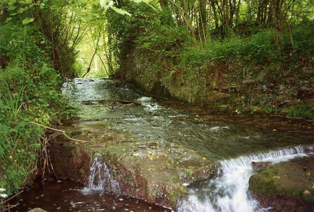 Compton Dando: possible site of dam for wire mill pond