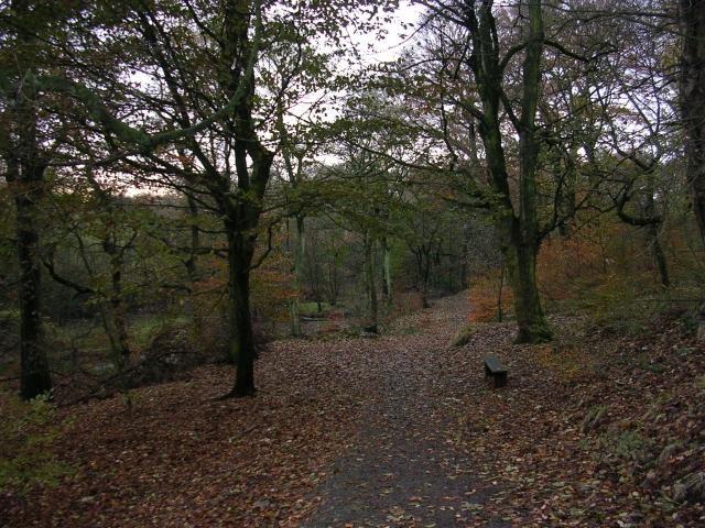 Hopwood Clough