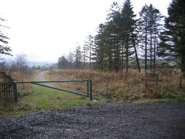 Low Moor Wood.