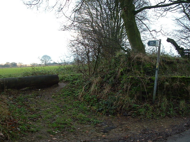 Footpath to High Hoyland