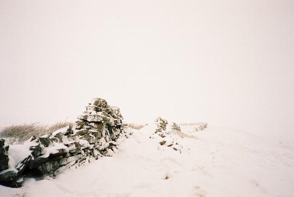 The slopes of Burnhope Seat